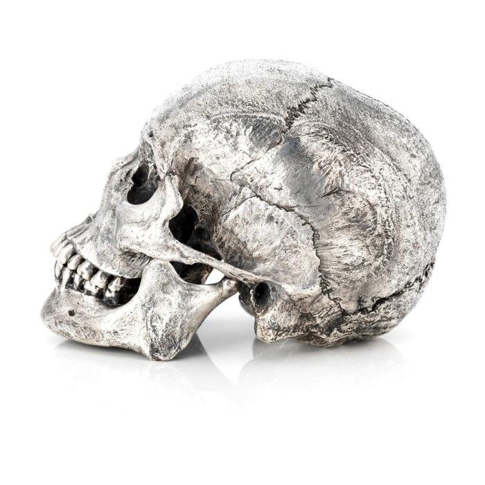 Living Art - Amanda and Björn Sjöling - Human Skull