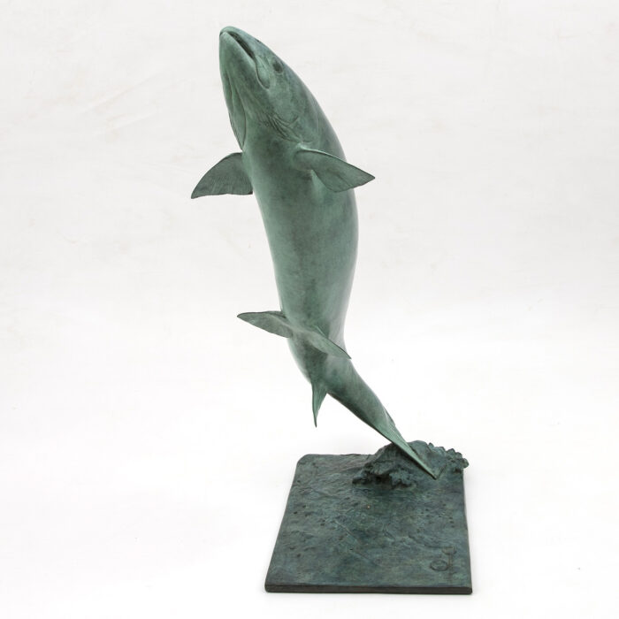 Living Art - Bryan Hanlon - Leaping Salmon