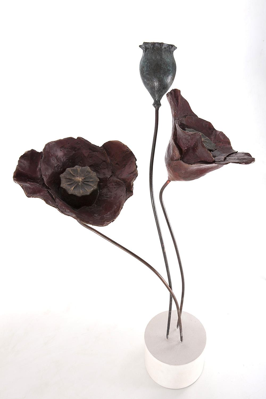 Living Art - Emma Harding - Open Poppies & Head
