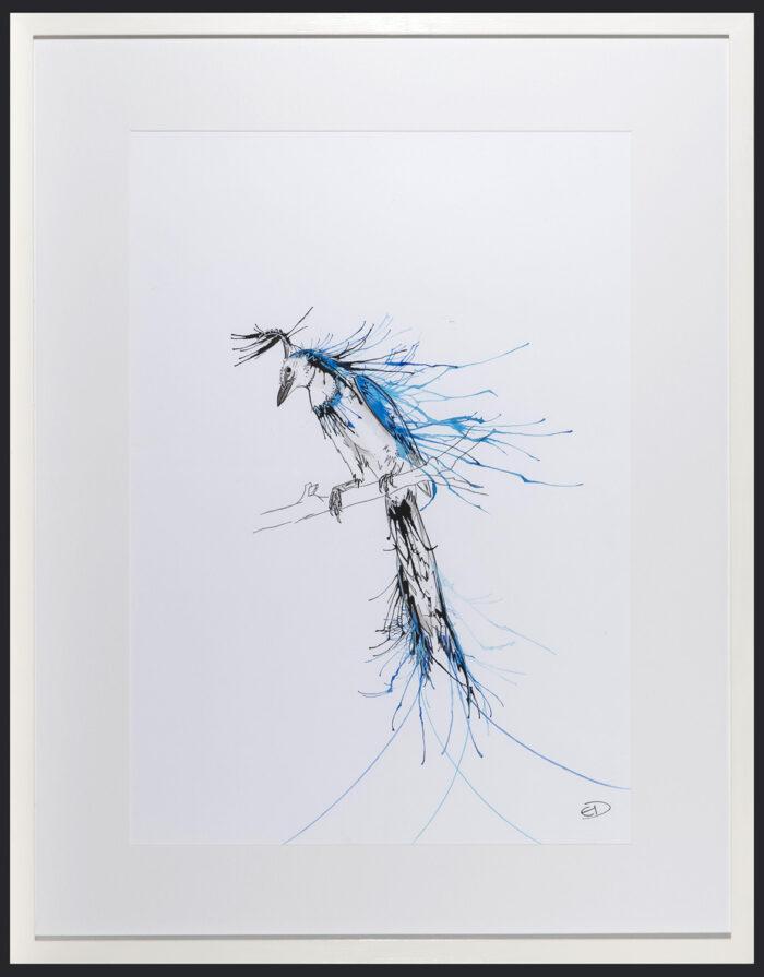 Living Art - Emily Donald - Blue Throated Jay