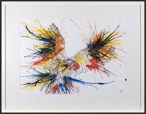 Living Art - Emily Donald - Macaw