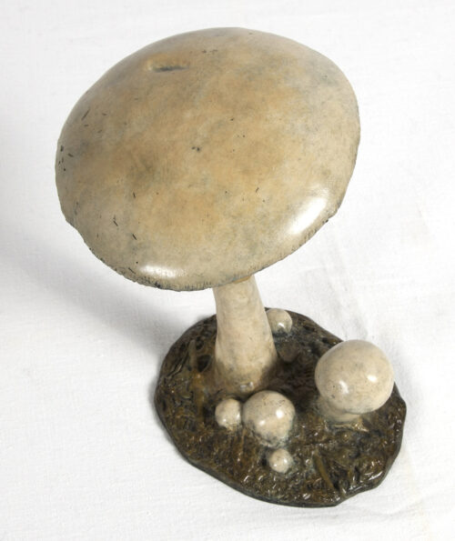 Living Art - Richard Smith - Horse Mushroom
