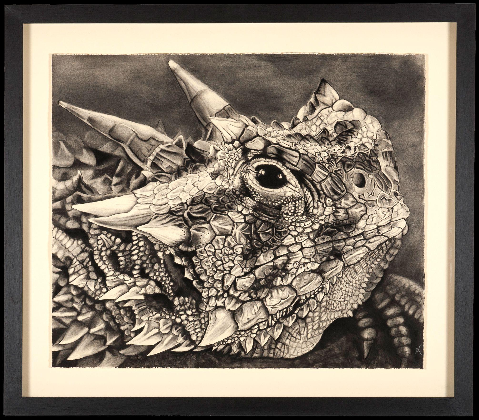 Living Art - Texas Horned Lizard