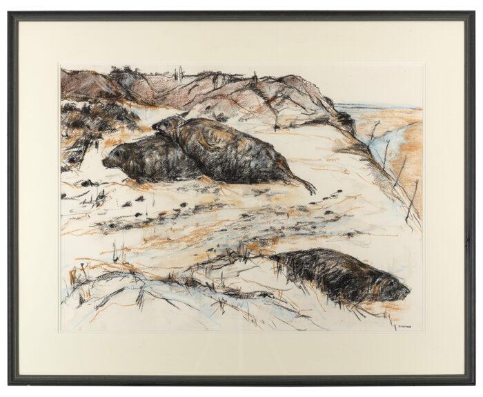 Living Art - Seals at Blakeney Point by Sally Newton